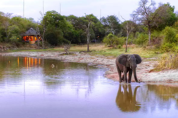 Watch the animals at the waterhole from your private deck.
